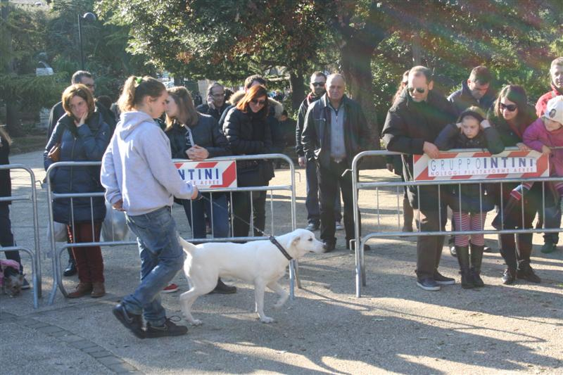 manif_villa_bitonto-126-medium