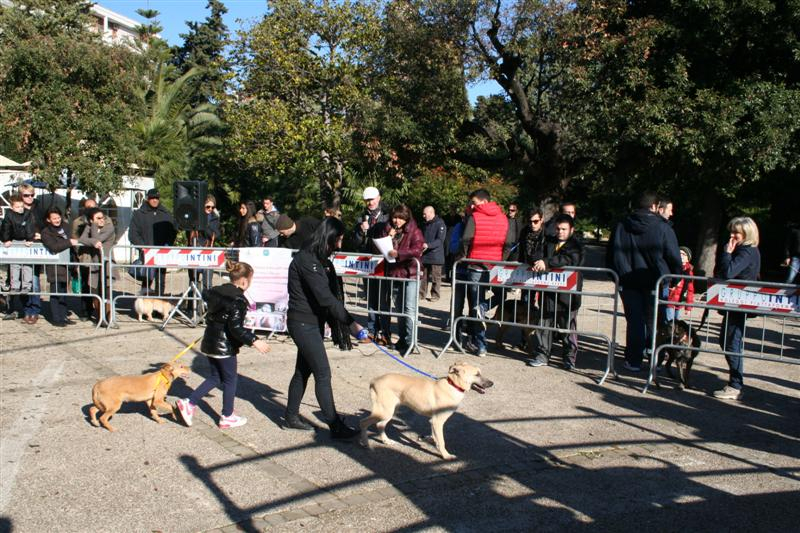 manif_villa_bitonto-14-medium