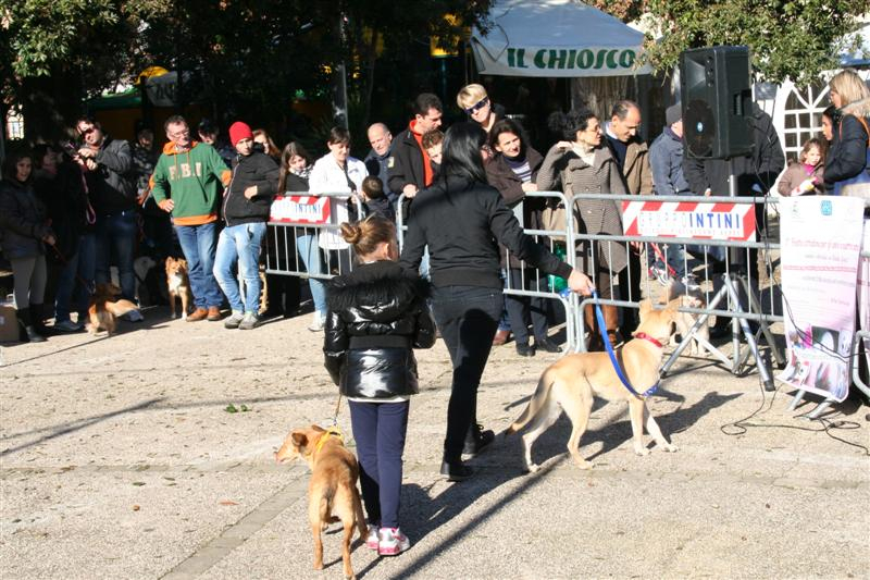 manif_villa_bitonto-15-medium