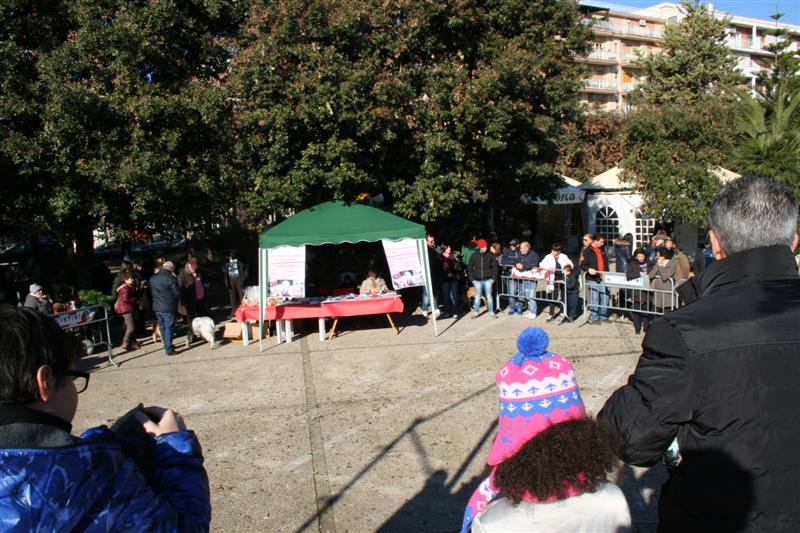 manif_villa_bitonto-22-medium