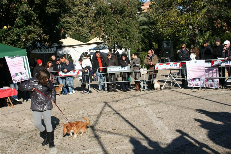 manif_villa_bitonto-31-medium