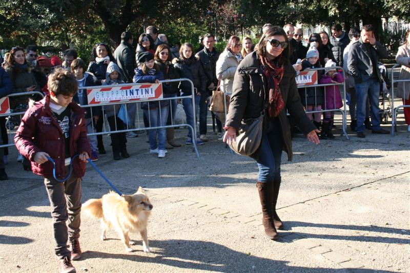 manif_villa_bitonto-34-medium