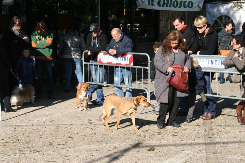 manif_villa_bitonto-57-medium