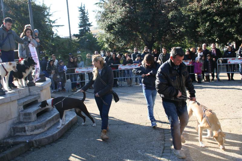 manif_villa_bitonto-81-medium