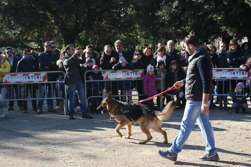 manif_villa_bitonto-85-medium