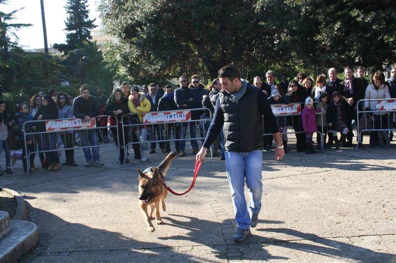 manif_villa_bitonto-86-medium