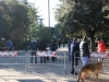 manif_villa_bitonto-06-medium