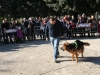 manif_villa_bitonto-108-medium